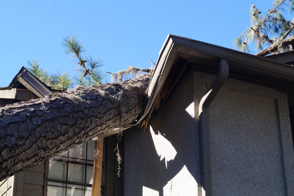 Home with tree fallen on the roof damaging the house