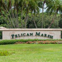 Pelican Bay Naples FL