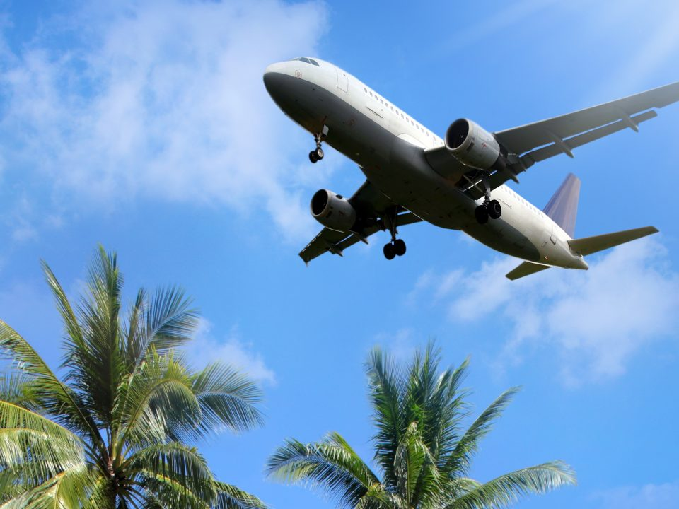 Picture of plane flying over palm trees
